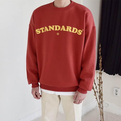 Standards MTM (3color)